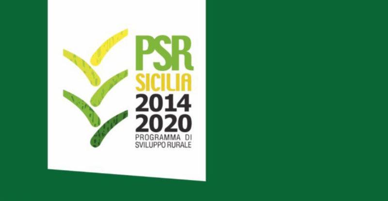 Castelvetrano. Fondi europei per gli agricoltori siciliani PSR Sicilia