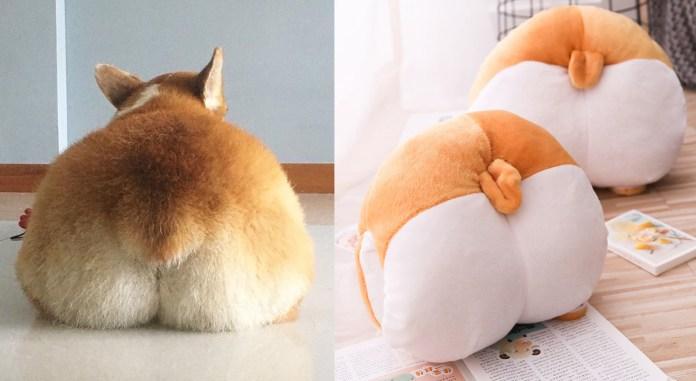 Corgi butt cushion