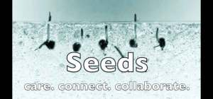 "Maya Theatre's Diverse Abilities Dance Collective presents ""Seeds"" @ Online"