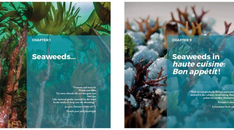 El libro CEI·Mar '¿Las algas se comen?' gana el 'Óscar' de la literatura gastronómica española