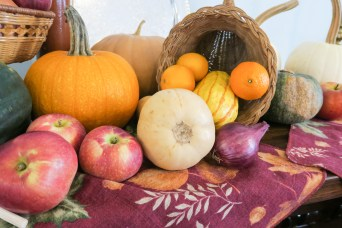 Cornucopia with apples, gourds, squashes, pumpkins