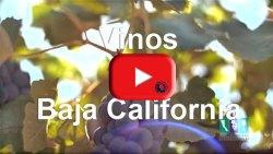 Vinos de Baja California