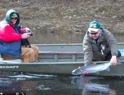 Miramichi River Fishing
