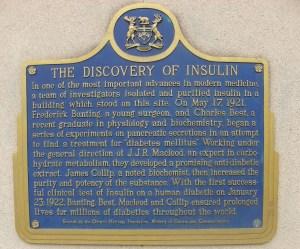 Insulin plaque University of Toronto © Lucy Izon