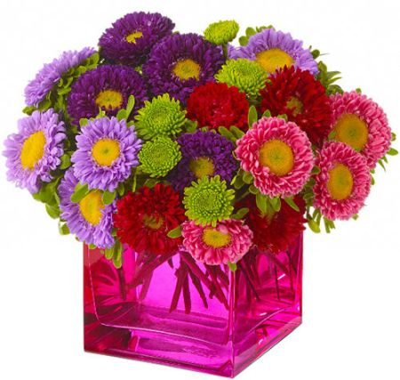 Telefloras Mad About Magenta Bouquet TFWEB165 Teleflora Budget Flowers Canada Flowersca