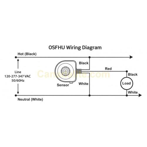 Honda Ft500 Wiring Diagram Xbr500: Honda Ft500 Wiring Diagram At Bitobe.net