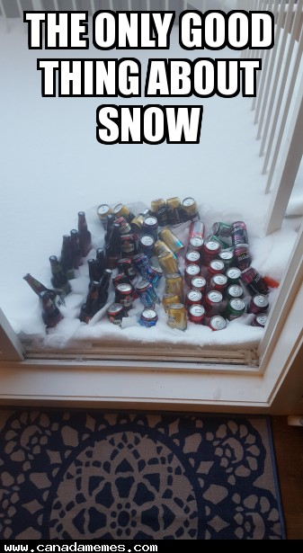 The only good thing about snow
