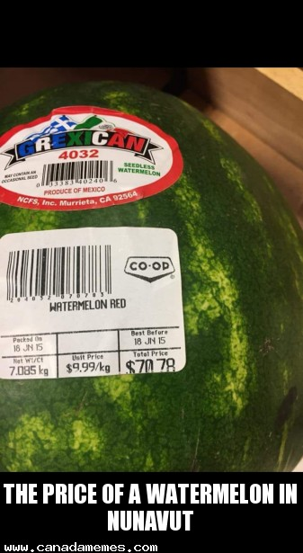 🇨🇦The price of a watermelon in Nunavut, Northern Canada