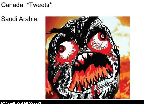 🇨🇦 Saudi / Canadian situation summarized in one meme...