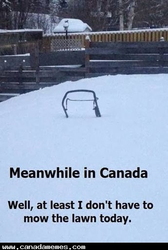 🇨🇦 The only good thing about snow is that you don't need to mow your lawn