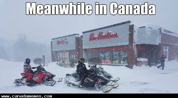 🇨🇦 Going to Tim's. Want anything?