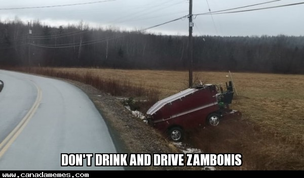 🇨🇦 Don't Drink and Drive Zambonis