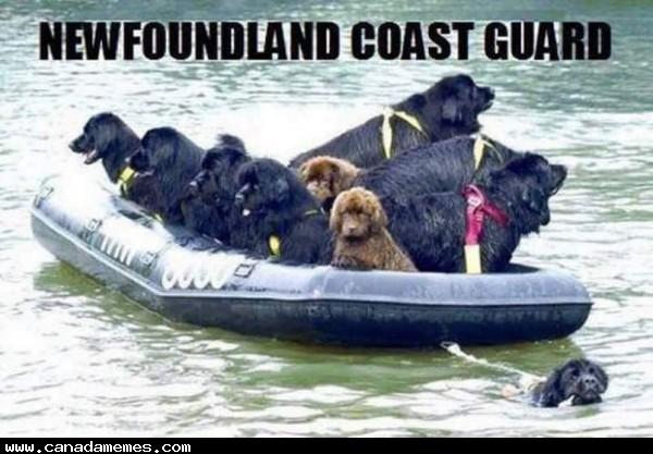 🇨🇦 Newfoundland Coast Guard
