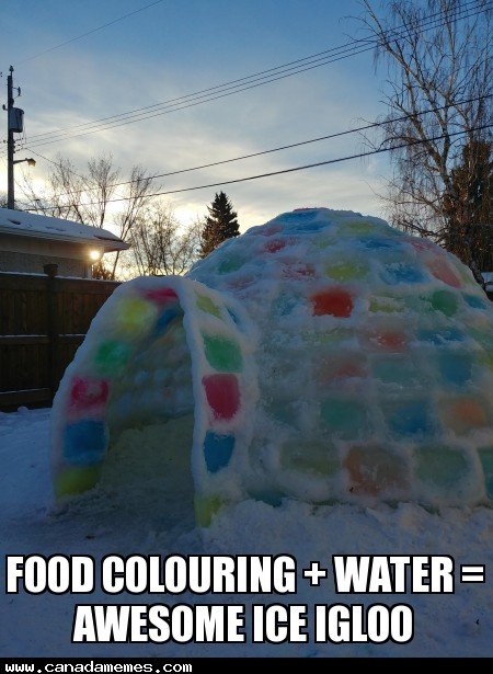 🇨🇦 Food Colouring + Water = Awesome Ice Igloo