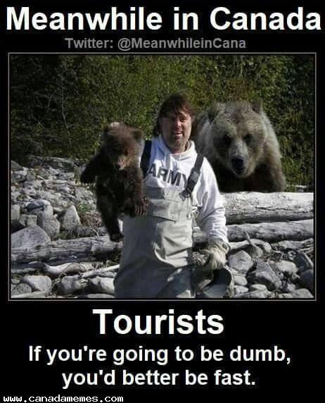 🇨🇦 Tourists.....