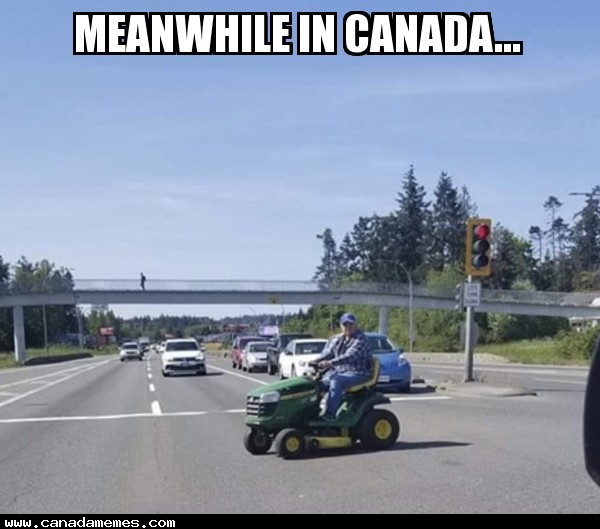 🇨🇦 Meanwhile in Canada...