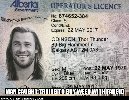 🇨🇦 Man caught trying to buy weed with fake ID