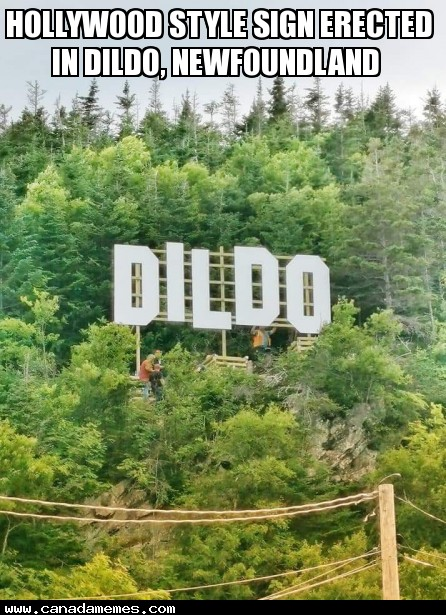 🇨🇦 Hollywood style sign erected in Dildo, Newfoundland