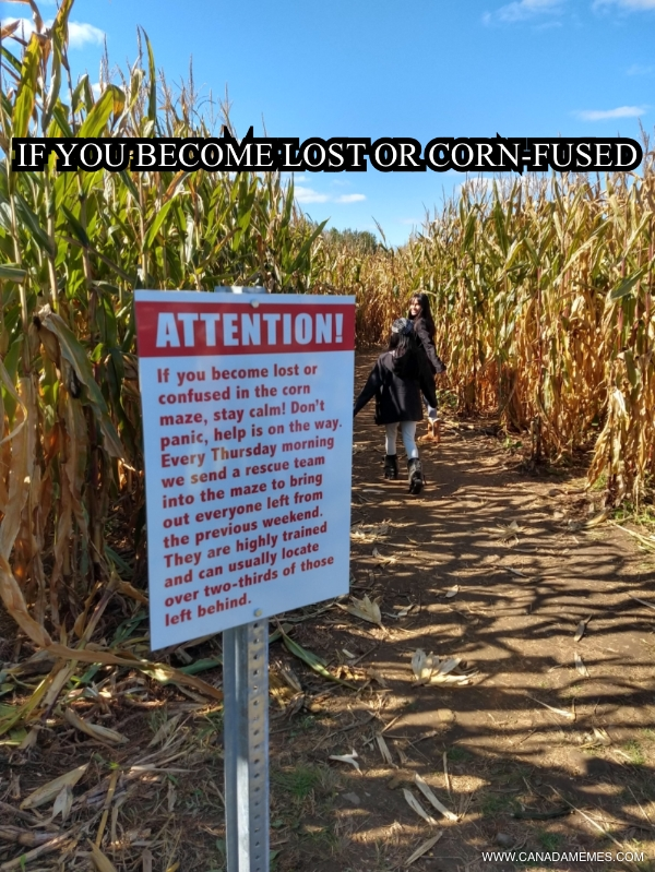 🇨🇦 If you become lost or corn-fused