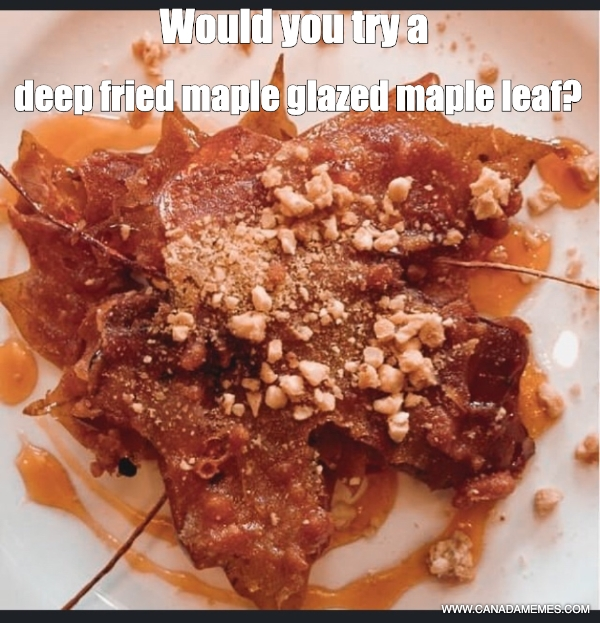 Would you try a deep fried maple glazed maple leaf?