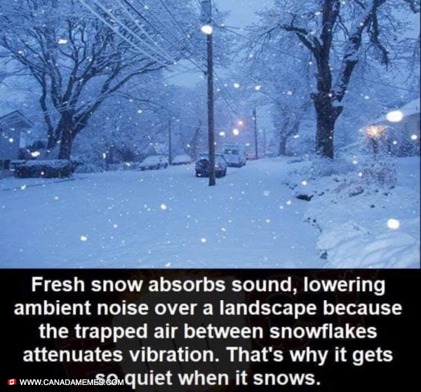 Snow - Now you know!