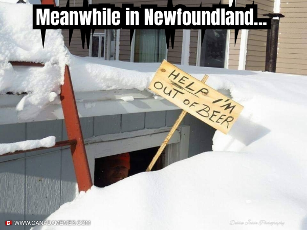 Meanwhile in Newfoundland