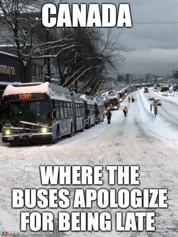 Canada: Where even the buses apologize