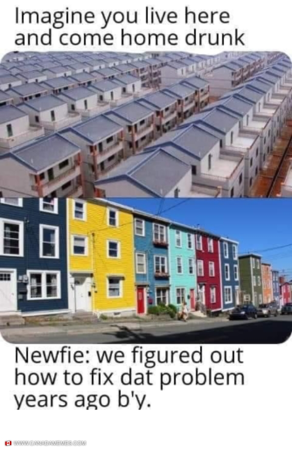So THAT'S why they painted their houses