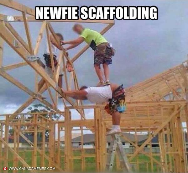 Newfie Scaffolding