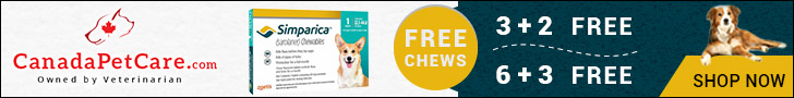 Offer Valid Till Stock Lasts! Shop Now to Avail 3 Months Free Supply of Simparica Chewables for Dogs + 10% Extra Discount & Free Shipping on All Orders!
