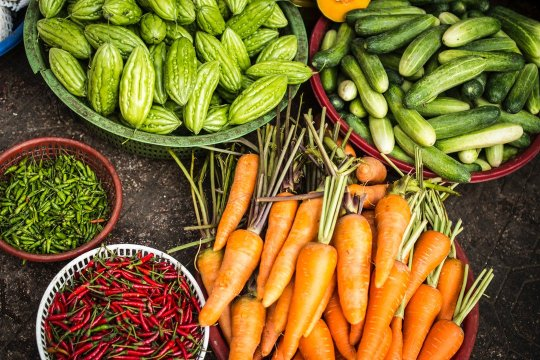Canada's Agriculture Agri-Food Immigration Pilot Program