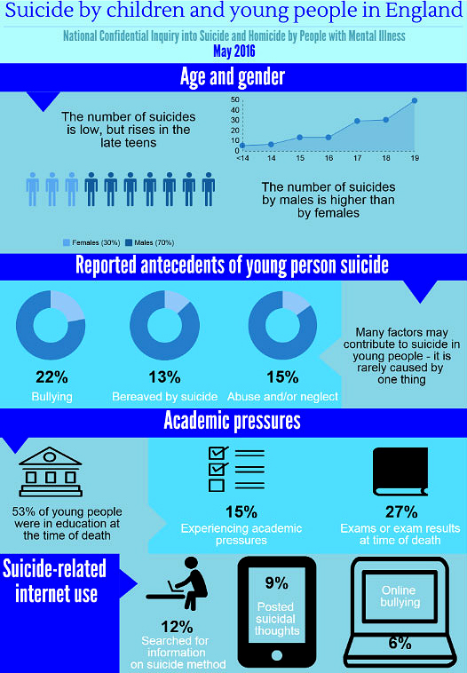 New Youth Suicide Study Reveals Triggers - Infographic 1