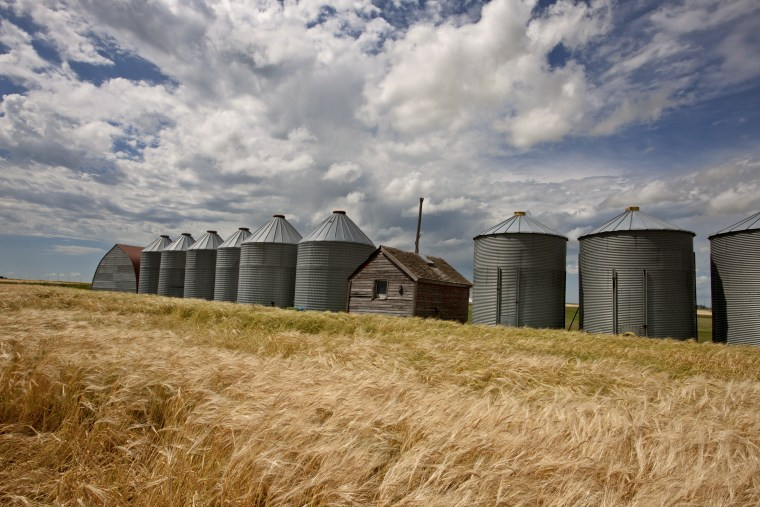Row of Granaries in Manitoba Canada Prairie
