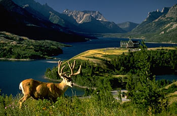 About Waterton Lakes