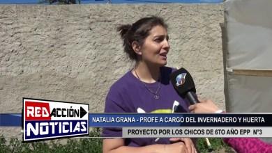 Photo of Redacción Noticias |  PROYECTO INVERNADERO EN EPP 3 – LAS HERAS SANTA CRUZ
