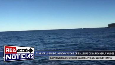 Photo of Redacción Noticias |  CHUBUT GANO EL PREMIO WORLD TRAVEL POR EL MEJOR AVISTAMIENTO DE BALLENAS A NIVEL MUNDIAL