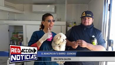 Photo of Redacción Noticias    DRA CINTIA GALERA MEDICO PROFESIONAL VETERINARIO – LAS HERAS SANTA CRUZ