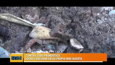 Photo of Redacción Noticias    HUERTA de Vecino -Las Heras Santa Cruz.