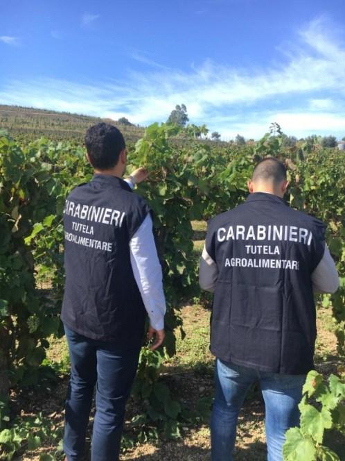 Attività dei carabinieri sul territorio, controlli nelle filiere agroalimentari