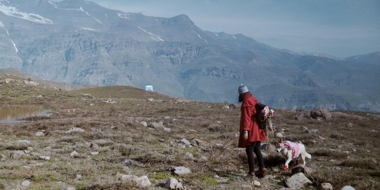 Visions du Reel: Festival de Documentales con participación chilena
