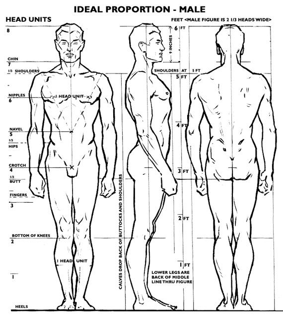 Um Pouco Sobre Anatomia, Proporções e Caimento de Roupas