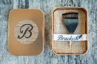 Brackish_broche_penas_01