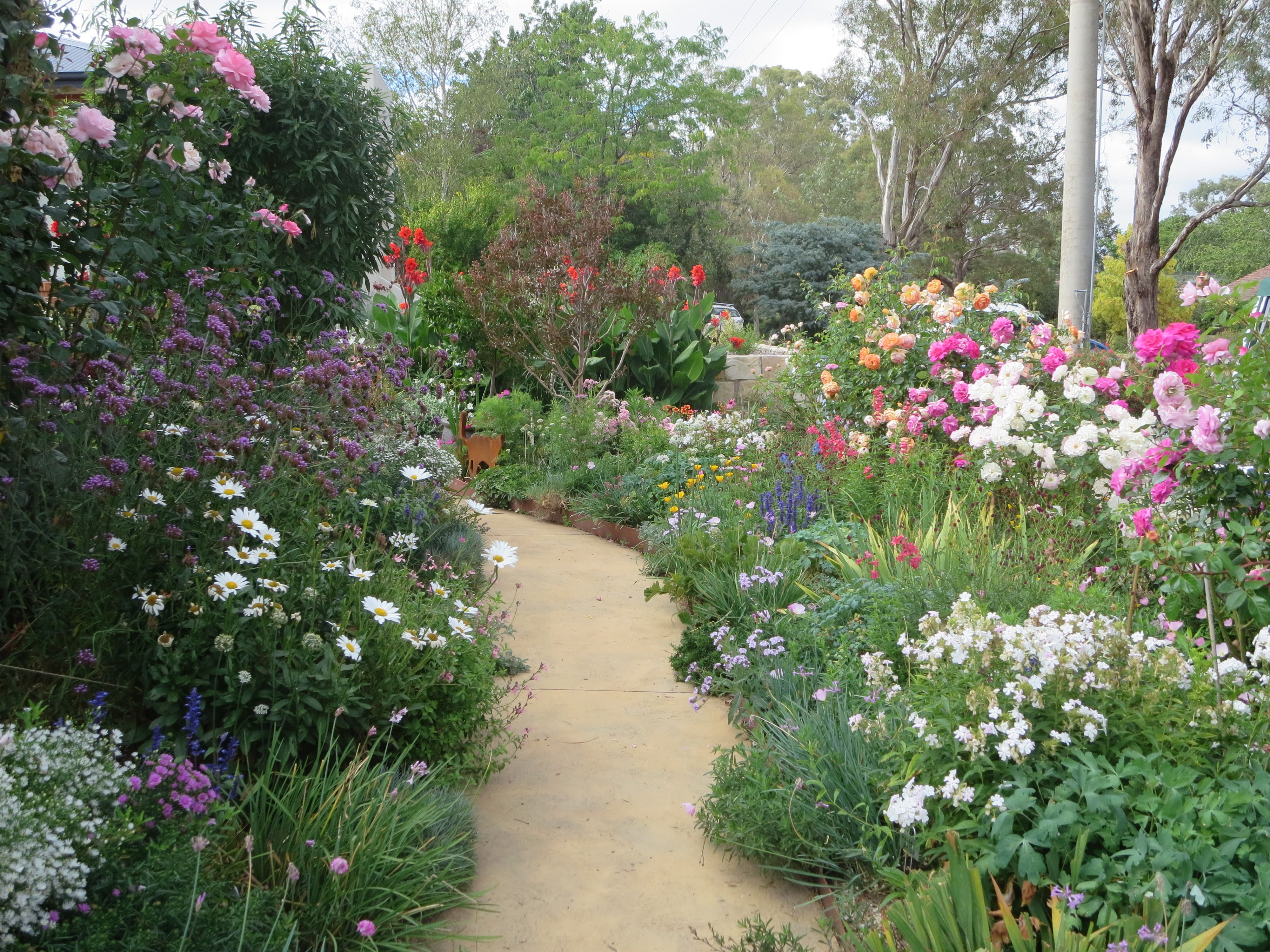 Cottage Gardens Paths -  plenty of mulching slow release fertilizer a couple of water tanks an artistic sister a sense of humour and a whole lot of love for gardening that