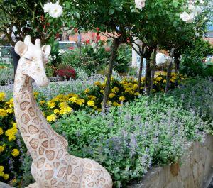 giraffegarden