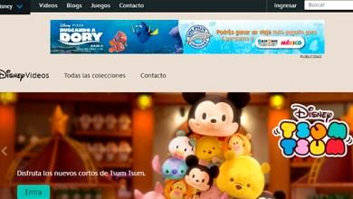 "Photo of Dolphin Discovery da a conocer el ganador del concurso ""Buscando a Dory"""