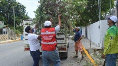 Photo of Reportan saldo blanco tras el paso de la tormenta «Gamma» en Isla Mujeres