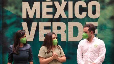 Photo of Candidatas en Puerto Morelos dejarán de participar en eventos de campaña por seguridad: Pablo Bustamante