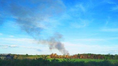 Photo of Registran 23 incendios forestales en lo que va del mes en Q. Roo