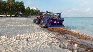 Photo of Playas en Isla Mujeres se mantienen limpias de sargazo