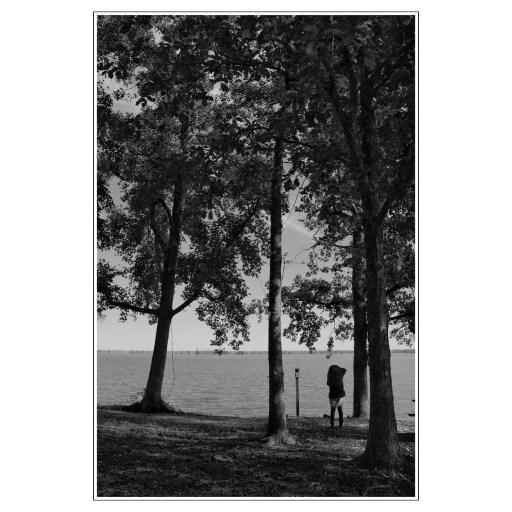 lake woman trees bird feeder